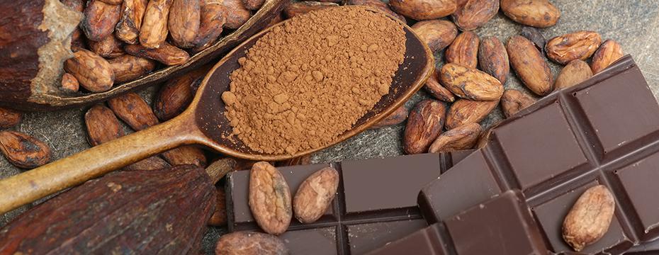 Du cacao au chocolat …une grande histoire !