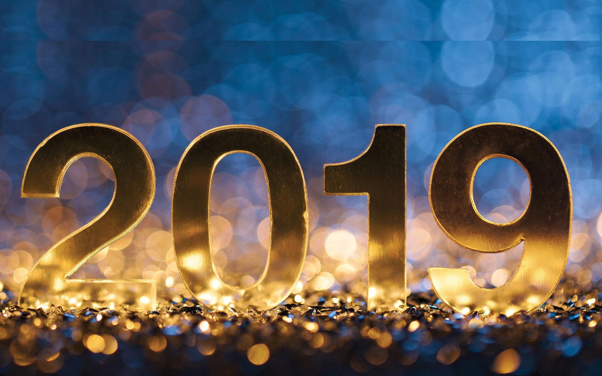Meilleurs vœux 2019