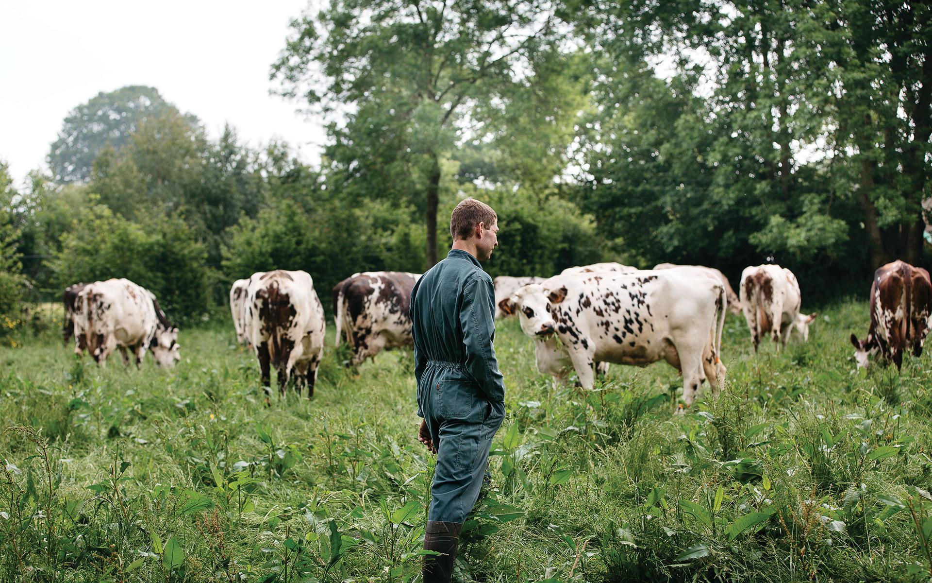 La 56ème édition du Salon International de l'Agriculture