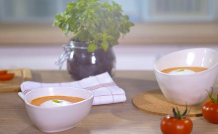 Gaspacho tomate & crème basilic