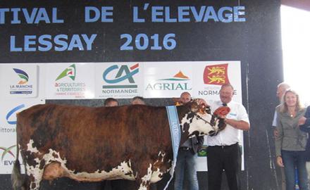 Elle & Vire partenaire du festival de l'élevage de Lessay