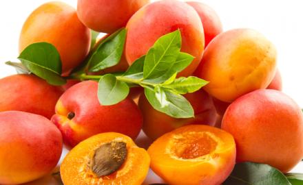 C'est l'un des fruits d'été préférés des français et c'est la pleine saison…