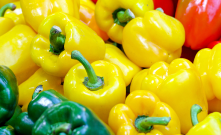 Poivron… Vert, jaune, orange, rouge… c'est une question d'âge mais c'est le même !