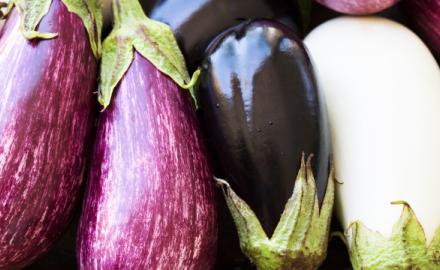 L'aubergine : une mal aimée d'hier que tous les gourmands adorent aujourd'hui…