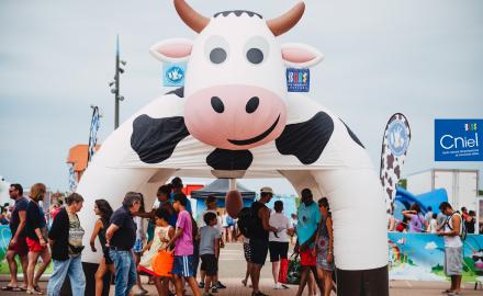 Les produits laitiers s'installent sur votre plage préférée