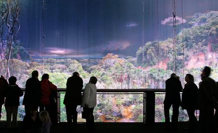 Panorama Amazonia à Rouen : la grande exposition 360° sur la forêt tropicale