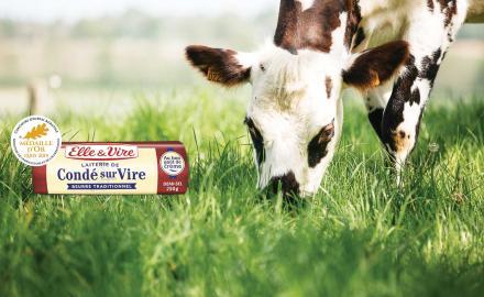 Le beurre demi-sel de Condé-sur-Vire médaillé d'or !