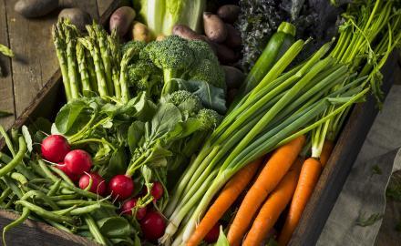 Cuisinez vrai, Cuisinez bon avec des produits de saison